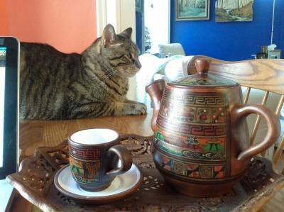 Las Chismosas & Zuko, Alpha Cat